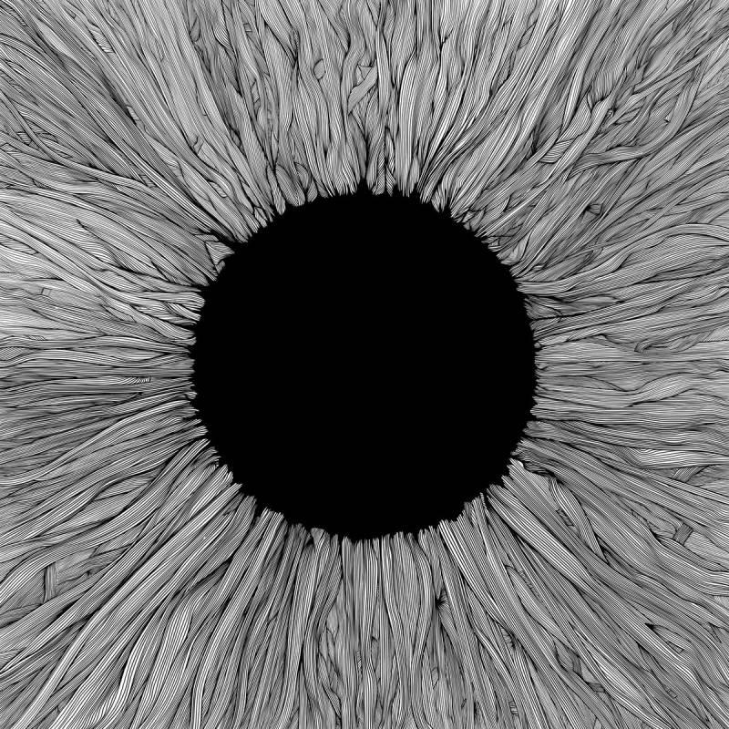 chronique Vola - Witness