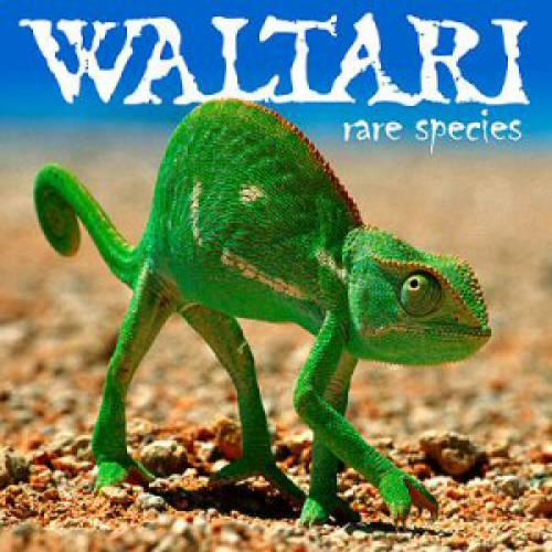chronique Waltari - Rare Species