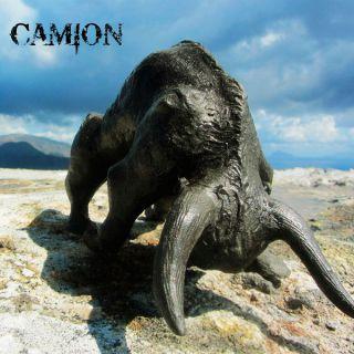 Camion - Bulls (chronique)