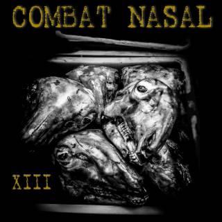 Compilation - Combat Nasal vol.13 (chronique)