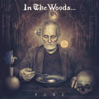 In The Woods... - Pure (chronique)