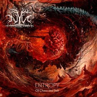 Nyn - Entropy: Of Chaos and Salt (chronique)