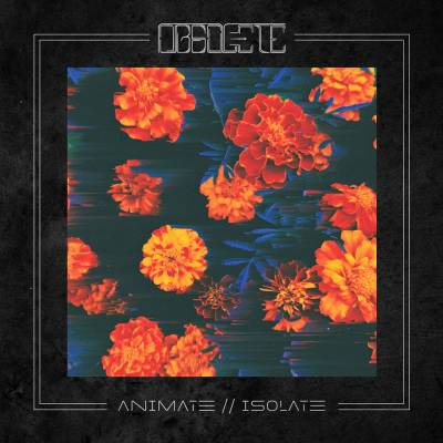 Obsolete - Animate//Isolate (chronique)