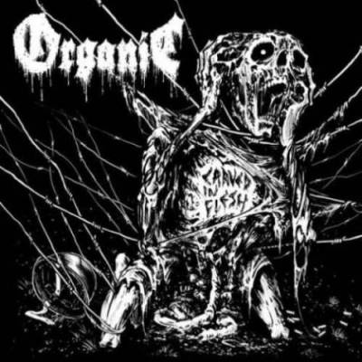 Organic - Carved in Flesh (Chronique)