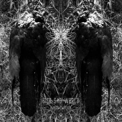 Sick Sad World - Imago clipeata (chronique)