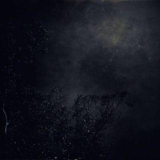 Terra - Untitled