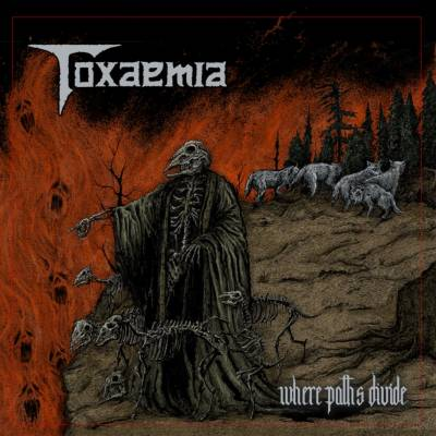 Toxaemia - Where Paths Divide (Chronique)
