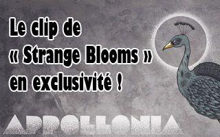 Appollonia : le clip de 'Strange Blooms' en exclusivité