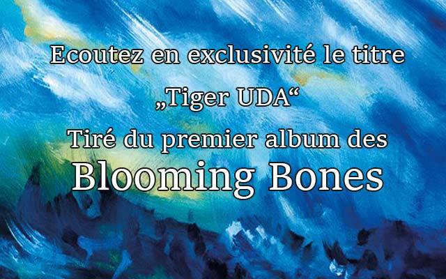 Découvrez un titre du premier album des Blooming Bones en exclusivité ! (dossier)