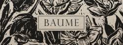 Baume (groupe)