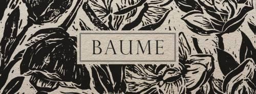 Baume (groupe/artiste)