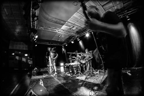 Insane Order (groupe/artiste)