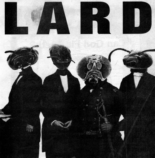 Lard (groupe/artiste)