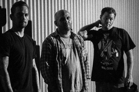 Tiger Crew (groupe/artiste)