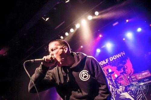Wolf Down (groupe/artiste)