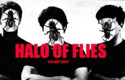 Halo Of Flies