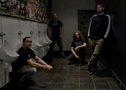 Infest (groupe)