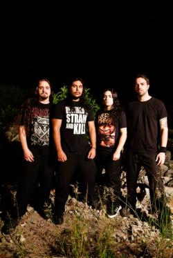 Lacerated And Carbonized  (groupe)