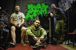 Zoebeast (groupe)