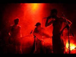 WELLDONE DUMBOYZ (groupe du mois groupe du mois de mars 2010)