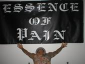 Essence Of Pain - Demo