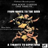 chronique From roots to the seed - From roots to the seed