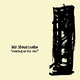 Mr Moustache - Staring at the Sun