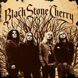 Black Stone Cherry - Black Stone Cherry (chronique)