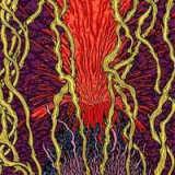 Zozobra - Harmonic tremors