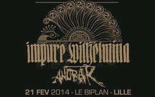 Impure Wilhelmina + Anorak - Le Biplan / Lille - le 21/02/2014