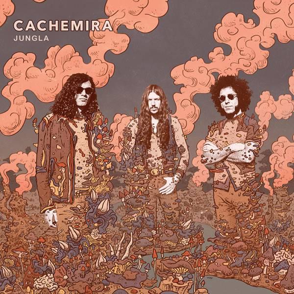 Premier album pour Cachemira en mai (actualité)