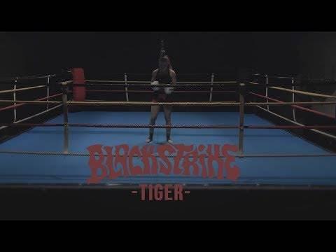Black Strike - l'oeil du Tigre (actualité)