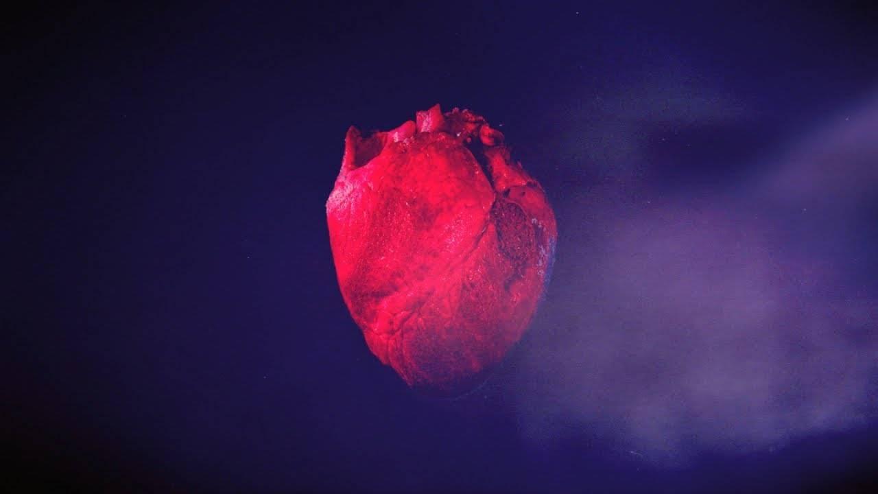 Foscor plus fort que L.amor.t (actualité)