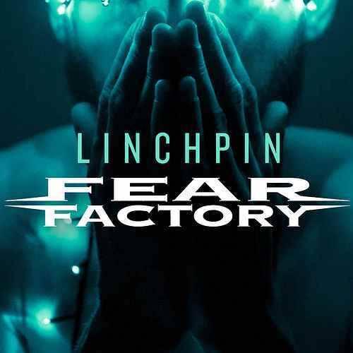 Fear Factory dupés ?! (actualité)