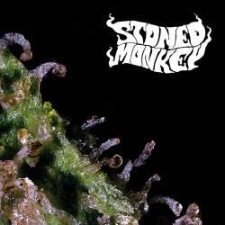 Tous les singes de pierre de  Stoned Monkey