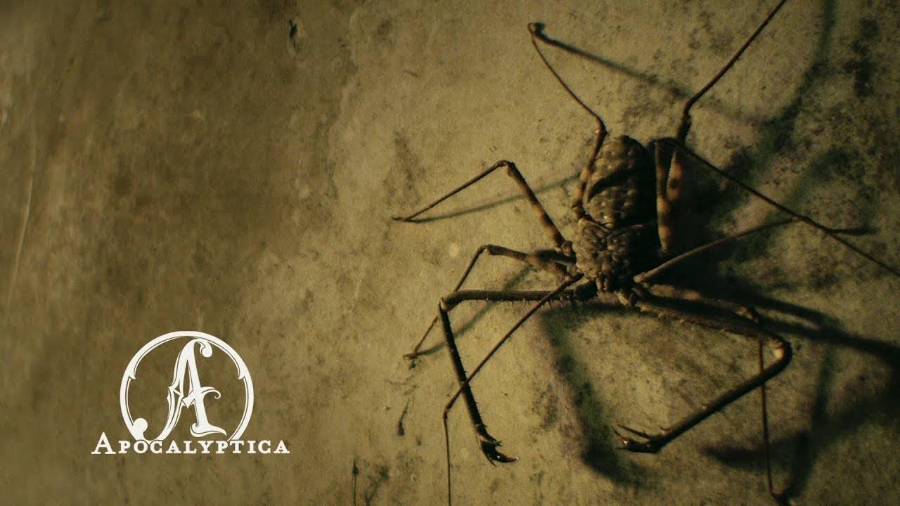 Apocalyptica va au concert de Mayhem  - En Route To Mayhem (actualité)