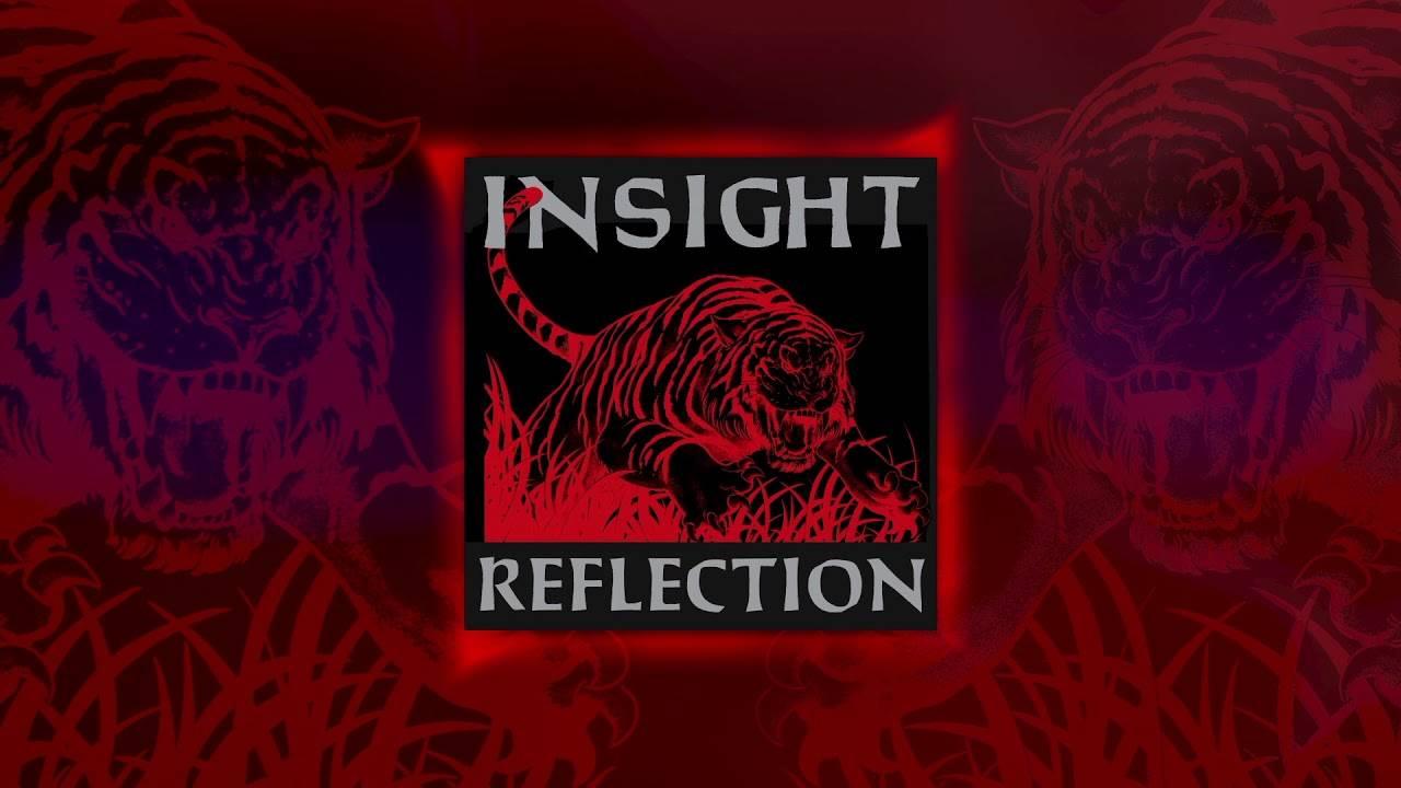 Insight s'est donné le temps de la réflexion - Reflection  (actualité)