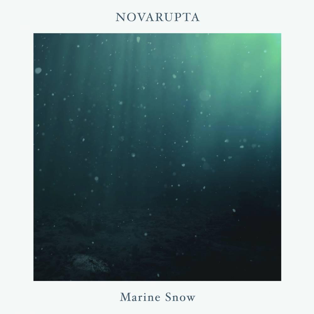 """Des cassures en cascade pour Novarupta  - """"Broken Blue Cascades"""" (actualité)"""