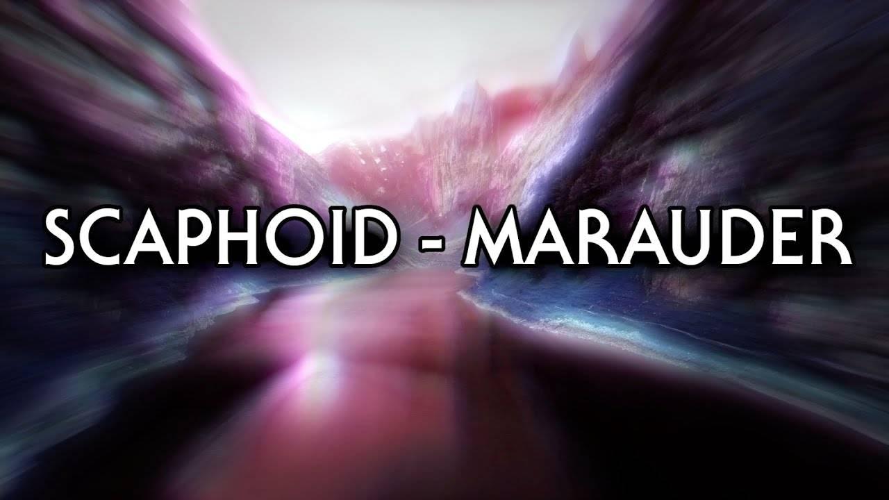 """Scaphoid part """"Marauder (actualité)"""