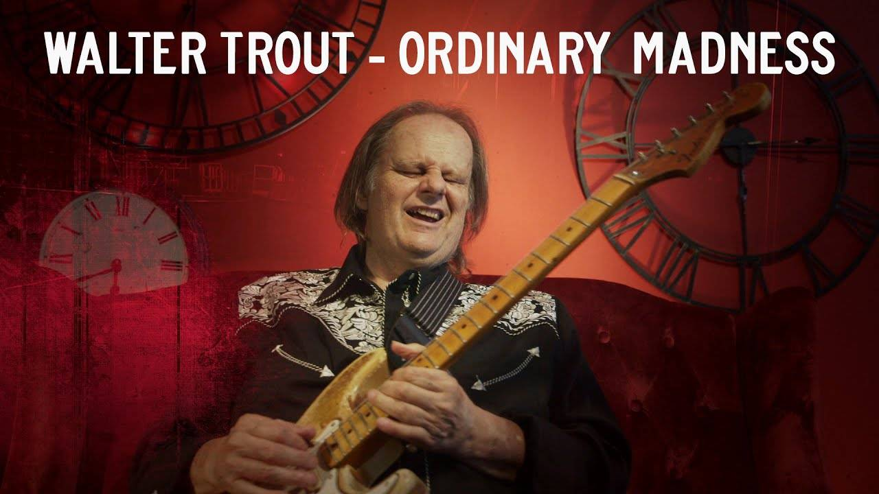 Walter Trout chronique de la folie ordinaire - Ordinary Madness (actualité)
