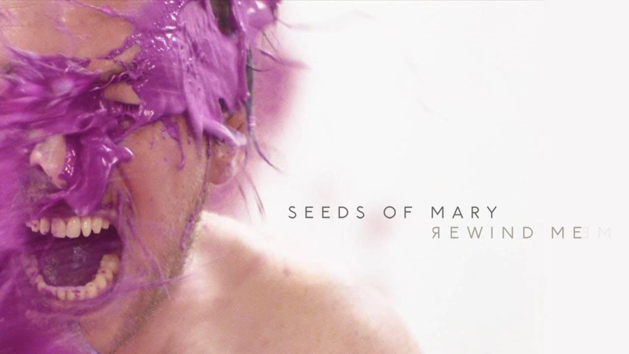 Seeds of Mary se fait remonter - Rewind Me (actualité)