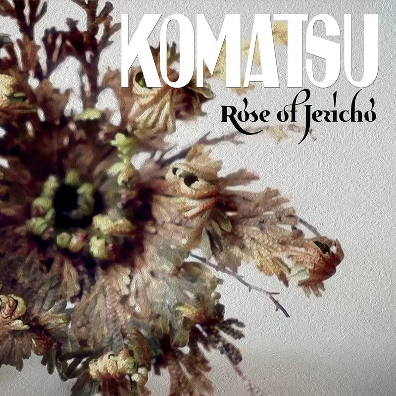 Komatsu cueille une rose - Rose of Jericho (actualité)