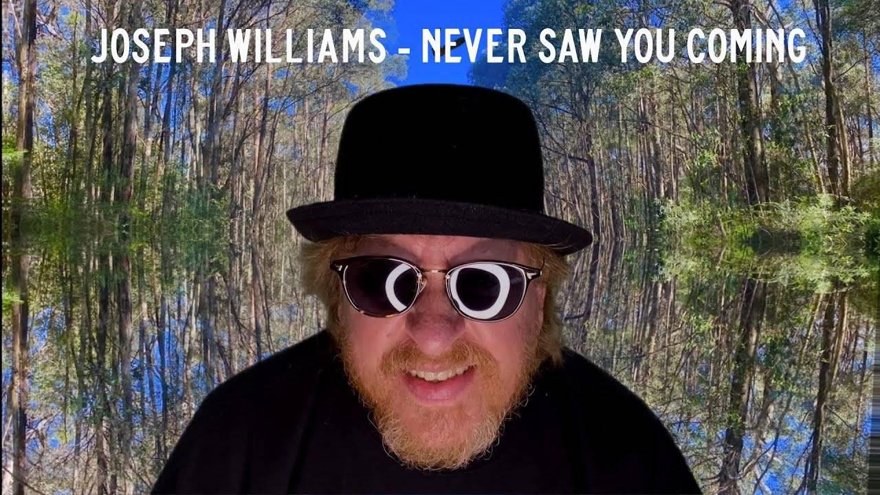Joseph Williams n'a rien vu venir - Never Saw You Coming (actualité)