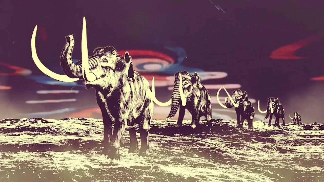 """Acid Mammoth s'énerve vraiment - """"Berserker"""" (actualité)"""