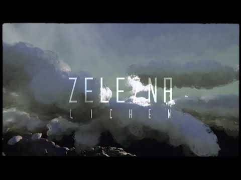 Zelezna s'acroche au branches - Lichen (actualité)