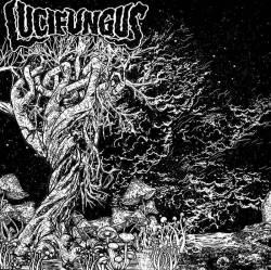 Nouvel EP pour Lucifungus - The Transpyramid Project
