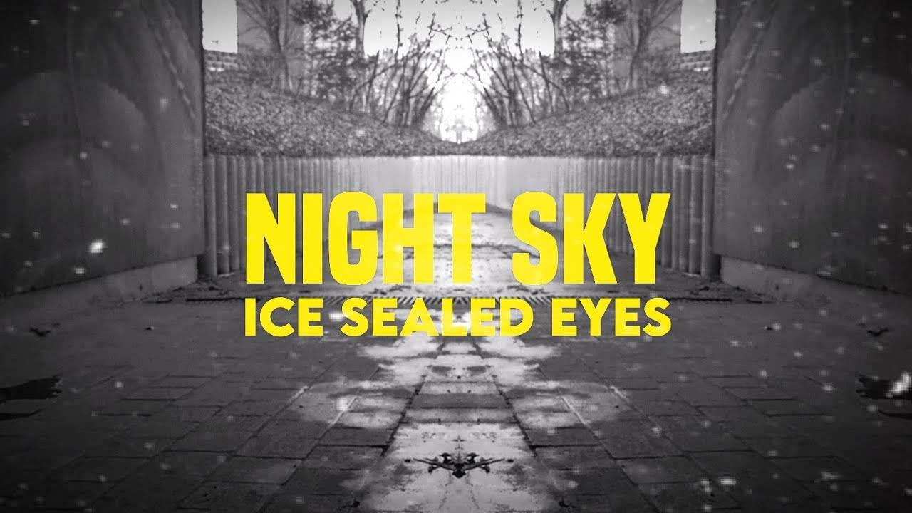 Ice Sealed Eyes  observe les étoiles - Night Sky