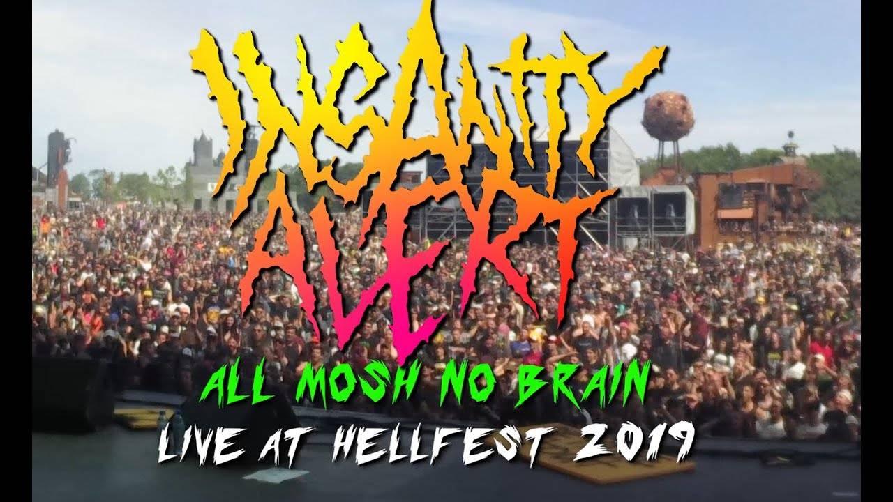 Insanity Alert laisse son cerveau au bord du mosh-pit - All Mosh / No Brain (actualité)
