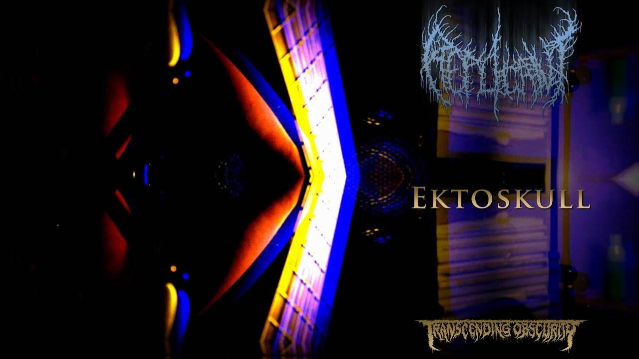 Replicant et ton skull c'est du poulet - Ektoskull (actualité)